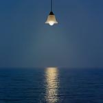 Steve Hilton - Night Light