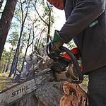 Fred Seeber - Cutting Firewood