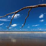 Alan Scott - Low Tide
