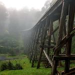 Hai Thi Nguyen - NOOJEE BRIDGE