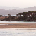 Lisa Li - Morning Light At Mallacoota