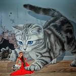 Rosie Hughes - WHOS AFRAID OF THE BIG BAD CAT