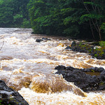 Hans Huysmans - Hilo Island Wailuka River