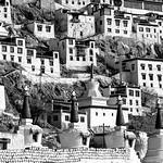 Jill Shaw - Thikse Monastery