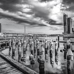 Anna Ramus - Victoria Harbour Precinct Melbourne