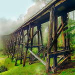 Tran Hiep Doan - NOOJEE TRESTLE BRIDGE