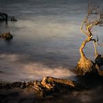 Anne Ramus - Beach Erosion