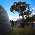 Ross Eddington - Mount Wellington