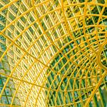 Jenny Yip - Yellow