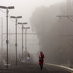 Lisa Li - A Winter Morning At Hughesdale Train Station