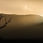 Anne Ramus - Halls Gap Sunset