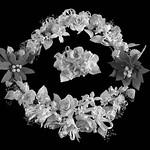 Bob Thomas - Icing Flowers