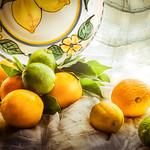 Anne Ramus - Still Life Citrus