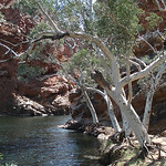Donna Clarke - Ellery Creek Big Hole NT