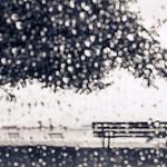 George Macfarlane - Rain Runner