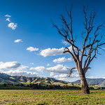 Russell Lucas - Old Tallangatta Valley Flats
