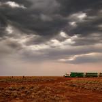Alan Scott - Cattle Road Train