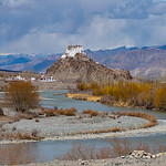 Jill Shaw - Stakna Monastery