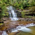 Geoff Shaw - Liffey Falls