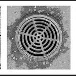 Ross Eddington - Grills of the World