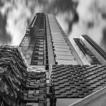 Vicki Moritz - Looking up Melbourne