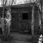 Vira Vujovich - Log Cabin.jpg