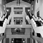 Donna Clarke - Old Hyatt Canberra