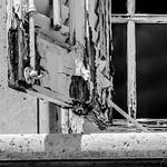 Geoff Shaw - Decay 2