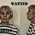Jill Anderson - Jailbird