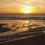 Ken Barnett - Sunrise at Lorne