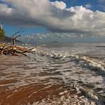 Alan Scott - High Tide