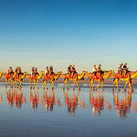 Marlene Chaitra - Camel Train Reflections