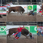 Alan Scott - The Bull Rider