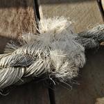 Donna Clarke - Mooring rope