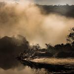 Anne Ramus - Burning Off, Eden Inlet (1 of 1)