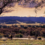 George Skarbek - Flinders Ranges