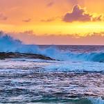 Peter Bond - Oahu