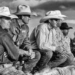 Wolf Marx - Cowboys