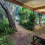 George Skarbek - Front garden