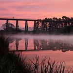 Rosie Hughes - Nicholson River