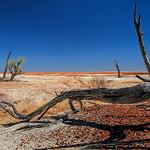 Alan Scott - Desert Sculpture