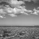 Vira Vujovich - Cloudy Day