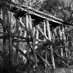 Jill Shaw - Old Bridge