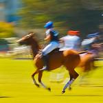 Rahul Kapur - Horseplay.jpg