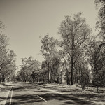 George Skarbek - Road to Yackandandah