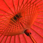 Donna Clarke - Old parasol