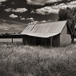 Alan Scott - Wheat Field Shack