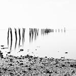 Nihal Basnayake - Abandoned pier