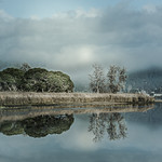 Anne Ramus - Misty Morning on Pambula Lake