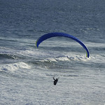 Donna Clarke - Gliding above the waves-